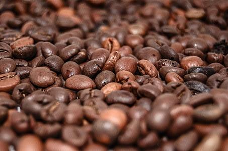 kohvioad, kohvi, jook, Kofeiin, pruulima, kohvimasin, aroom