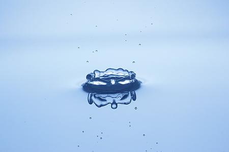 gota d'aigua, l'aigua, macro