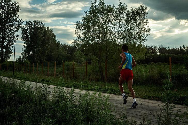skriešanas, agri no rīta, smags darbs, sporta, cilvēki, palaist