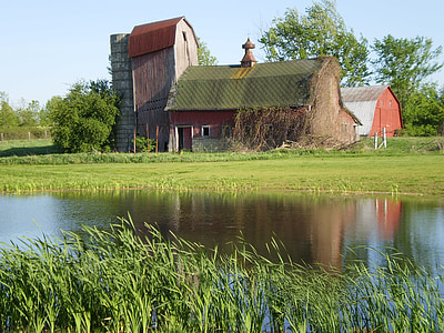 barn, water, old barn, agriculture, farm, structure, country