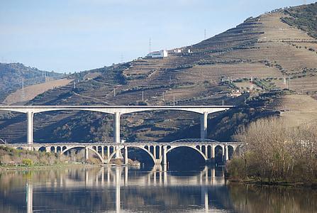 riu Douro, riu, natura, Régua, Pont, arquitectura, disseny d'arquitectura