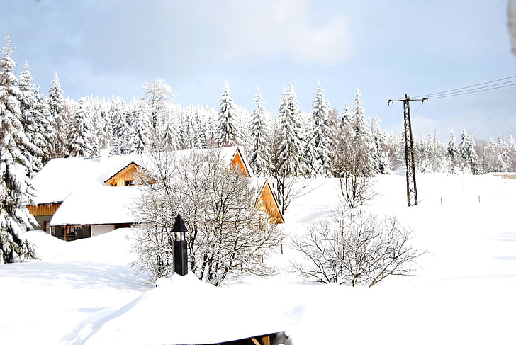 mountains, winter, peace, nature, landscape, frost