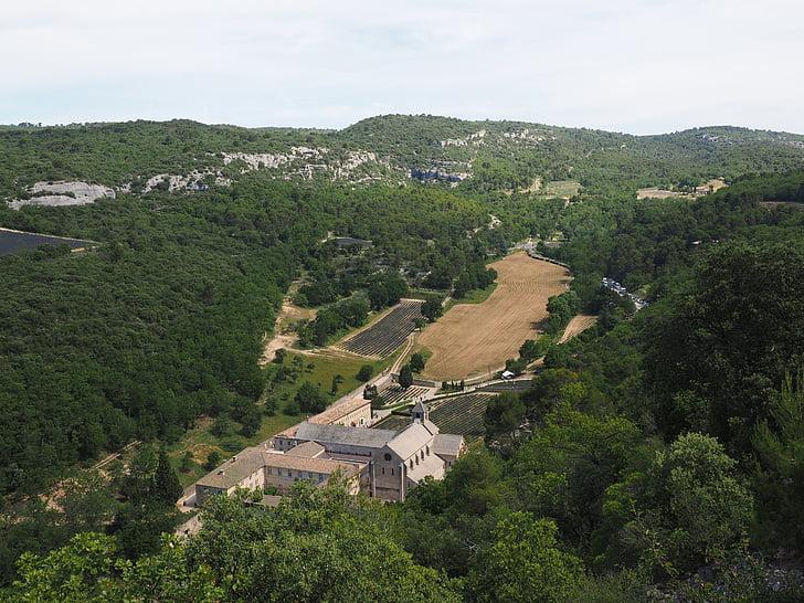 camp de lavanda, cultiu d'espígol, lavanda, tal de sénanque, Abbaye de senanque, Monestir, l'Abadia de