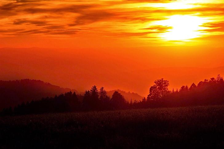 pôr do sol, sol de noite, dourado, céu, abendstimmung, céu da noite, atmosférico