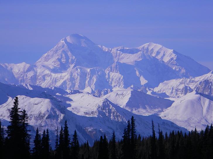 muntanya, Denali, Alaska, Nacional, Parc, paisatge, desert