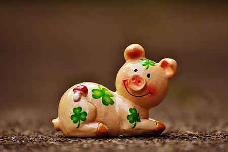 Lucky sika, kuva, onnea, onnenkalu, Hassu, Makea, eläinten