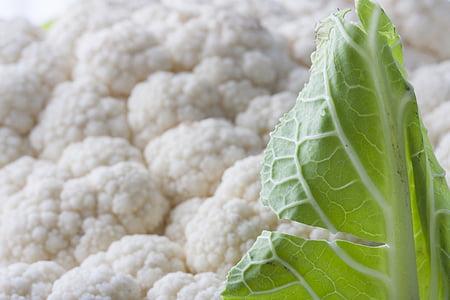 vit, blomkål, vegetabiliska, friska, kost, färsk, hälsa