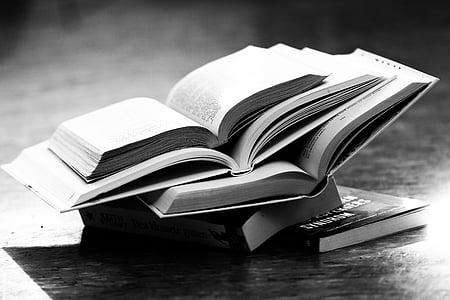 llibres, lectura, Biblioteca, coneixement, llegir