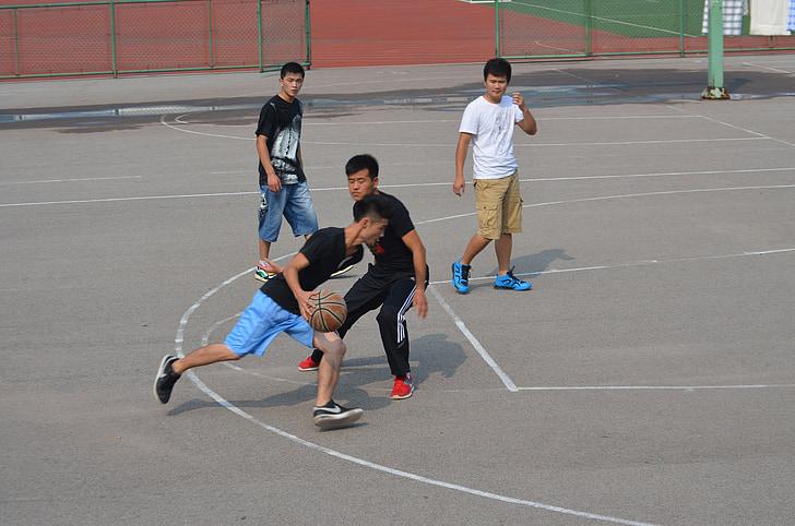 bàsquet, joc, esport, esports, recollida, parc infantil, anelles
