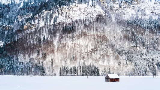germany, barn, isolated, alone, mountains, winter, snow