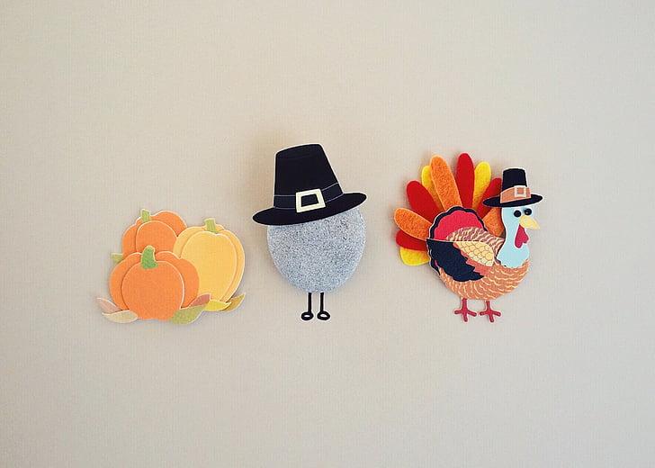 thanksgiving, turkey, season, holiday, studio shot, multi colored, no people