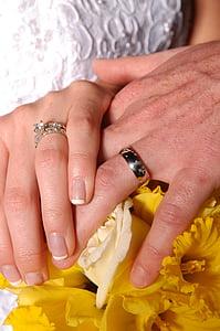 mans, matrimoni, anells, casament, narcisos, compromís, mà humana