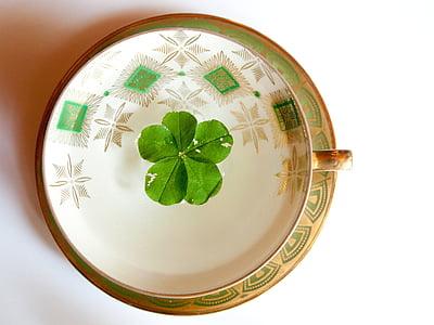 glückstee, fünfblättriges shamrock, symboli onnea, onnea, Four leaf apila