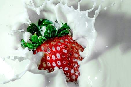 jordbær, mælk, jordbær mælk, grøn, rød, hvid, mad og drikke