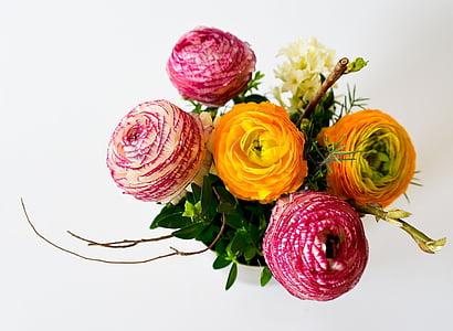 roosa, oranž, klaster, lilled, kimp, valge, taust
