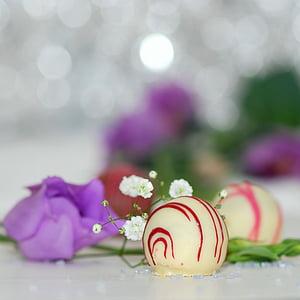praline, chocolate, white chocolate, sweetness, nibble, packed, gourmet