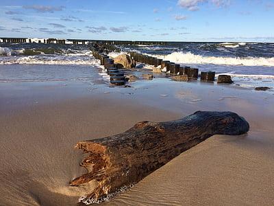 Sea, Beach, Sand, sininen, hiekkaranta, Holiday