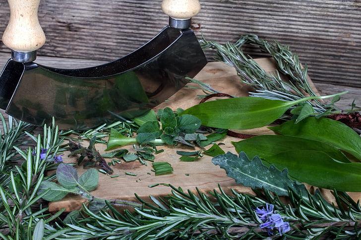 bilje, biljka nož, Rezanje ploča, biljka za ljuljanje, Kulinarski bilje