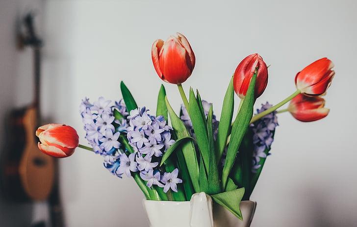 tulipany, Bzy, gitara, Wazon, czerwony, pomieszczeniu