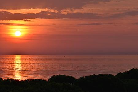solopgang, morgen, solen, tilbage lys, morgenstimmung, humør, solskin