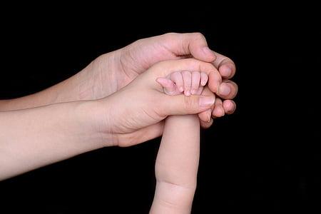 tata, mama, dragoste, mână, familia, Baby, noi studenţi