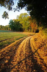 camps de la natura, camp, l'agricultura