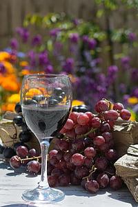 jook, puuviljad, viinamarjad, veini, Wineglass, viinamari, puu