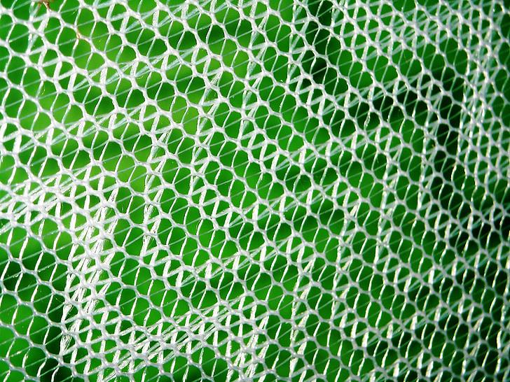 mosquiteres, blanc, paret, verd