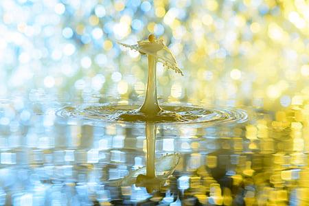 DROPP, vatten, droppe vatten, vatten-funktionen, spray, Injicera, vätska