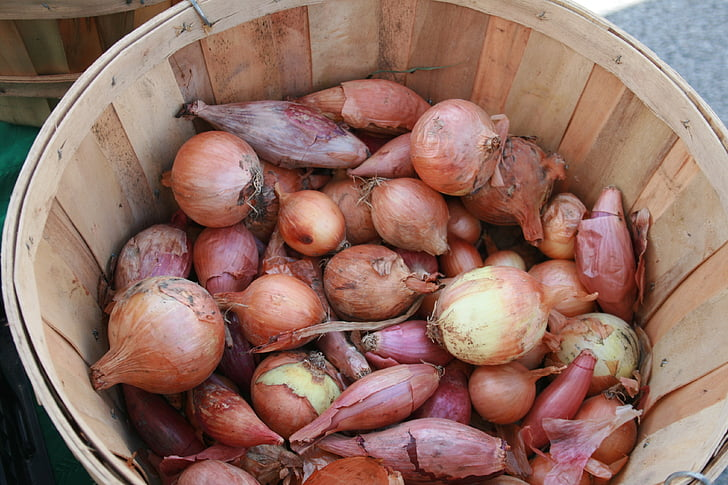 vegetables, farmer's market, basket, onions, ingredient, farmers market