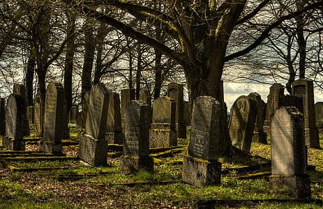 jødiske kirkegård, kirkegård, tavs, aftenhimmel, gravsten, resten, sorg