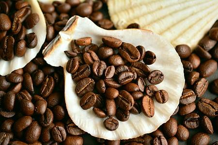 grains de café, café, haricots, caféine, arôme, torréfié, moules