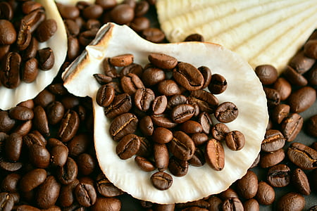 kaffebønner, kaffe, bønner, koffein, aroma, stekt, blåskjell