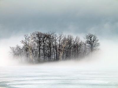 sala, rūkas, žiemą, Berkshires, ryte, svajinga, vaizdingas