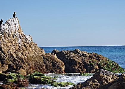 Vaikse ookeani, vee, Ocean, kalda, loodus, rannikul, California beach
