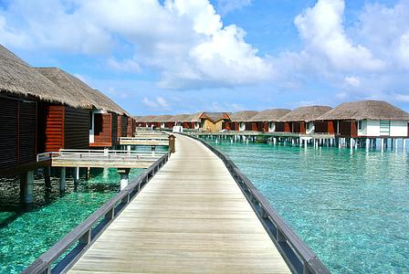 Maldives, platja, vacances, vocació, aigües clares, complex, Mar