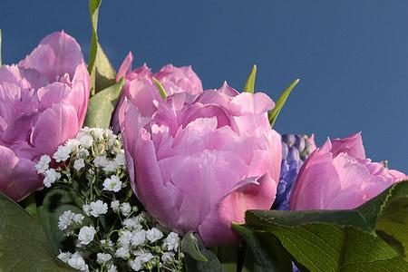 bouquet, doppi tulipani, riempito, Tulipani rosa, Gypsophila, fragranza, profumo di primavera