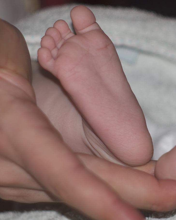 baby voet, moederschap, hand, houden, moeder, baby