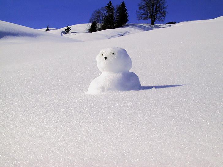 Snow man, sneeuw, winter, bouwen, koude, leuk