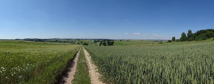 racławice, poland, landscape, the cultivation of, poland village, agriculture, nature
