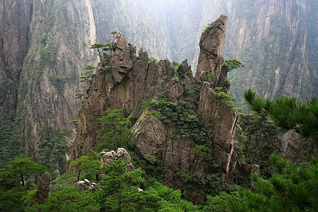 china, huangshan, cypress, jun rock, trees, no people, nature