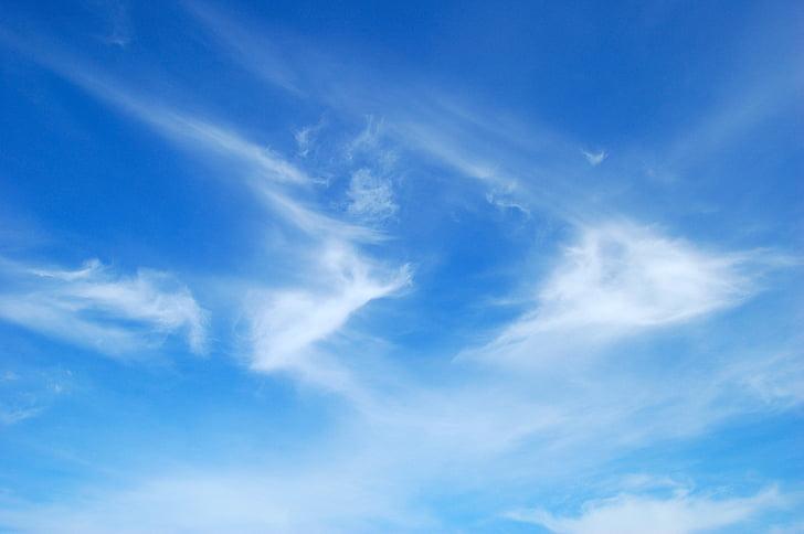 蓝蓝的天空, 云彩, 天空, 蓝色, federwolke, 光明, 美丽