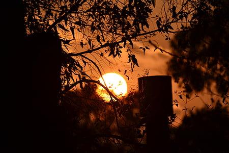 dawn, output sun, sun, setting sun, sunset, orange sky, silhouettes