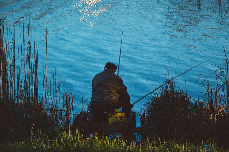 fishing, lake, fisherman, nature, water, fishing rod, fish