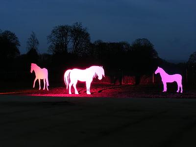 hobused, siluetid, Valgusfestival, valgus, valgustus, Art, looma