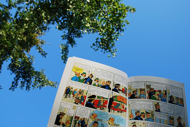 les aventures de Tintín, dibuixos animats, cel blau, sol, llegir, plaer