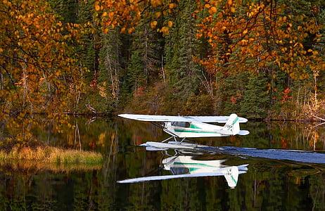 seaplane, autumn landscape, lake, water, nature, landscape, québec