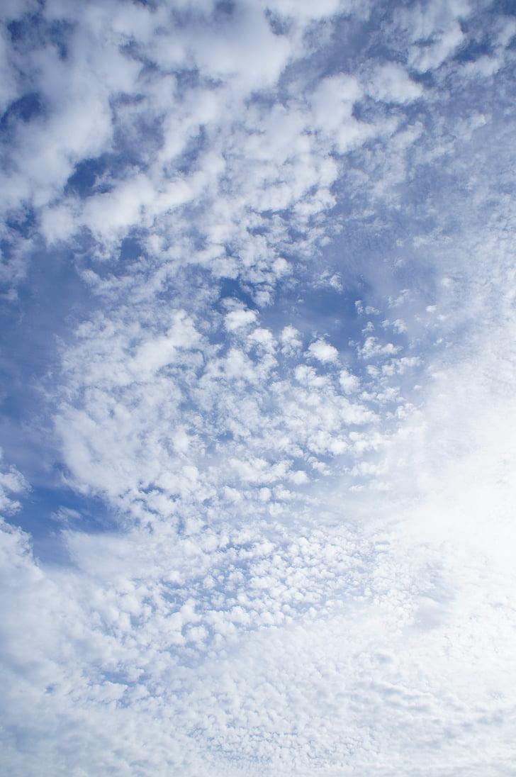 taevas, pilved, pilved