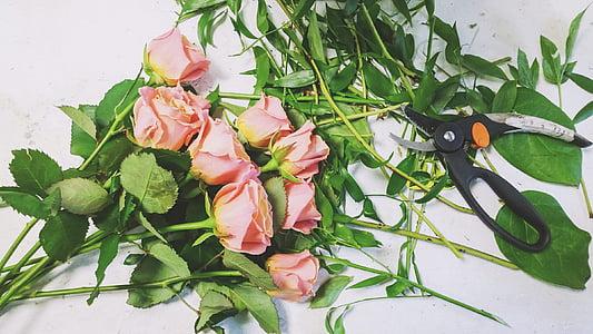 élet, szépség, jelenet, virágüzlet, Art, virágok, Flóra