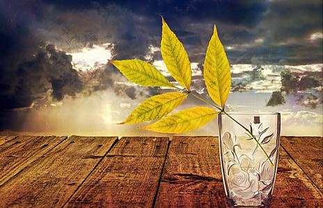 Zátiší, sklo, váza, dekorace, Deco, Váza Flower, listy